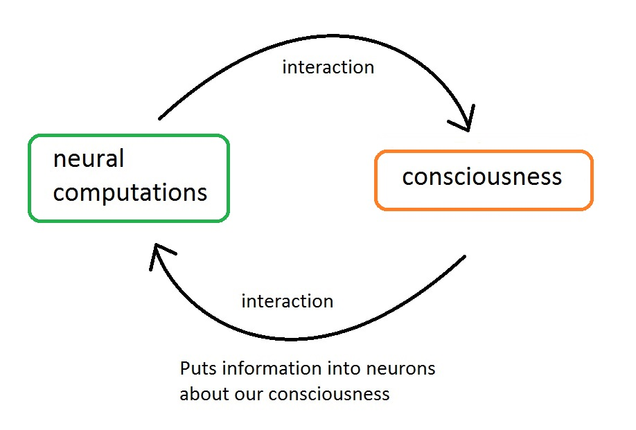 One possible interactionist explanation of how I know I'm conscious. I release this image into the public domain.