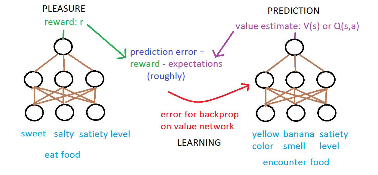Reward vs. valence networks