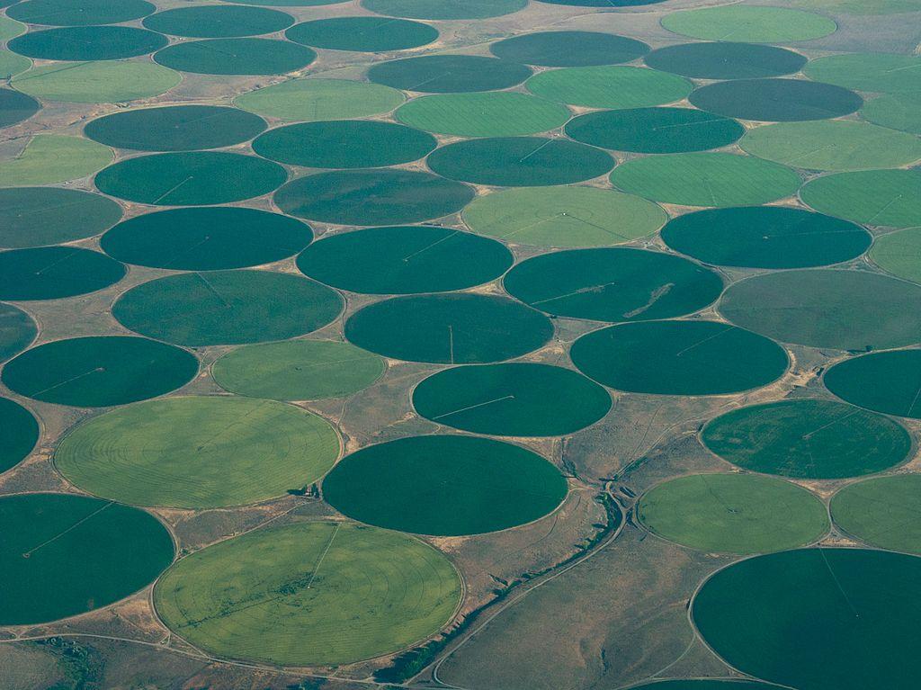 Crop circles along the Columbia, Washington, USA